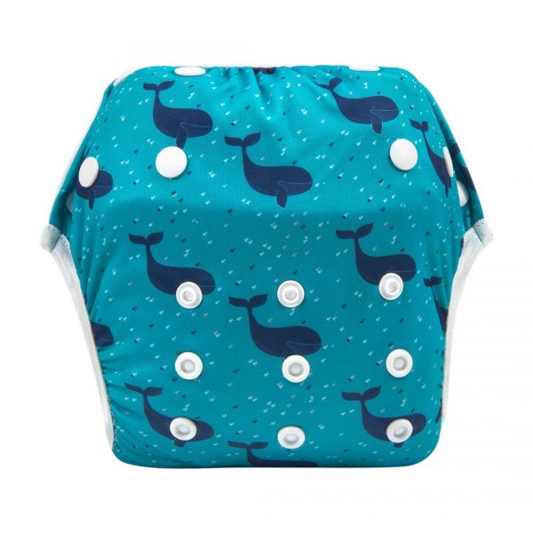 Moby Dick swim nappy sw77 alva baby
